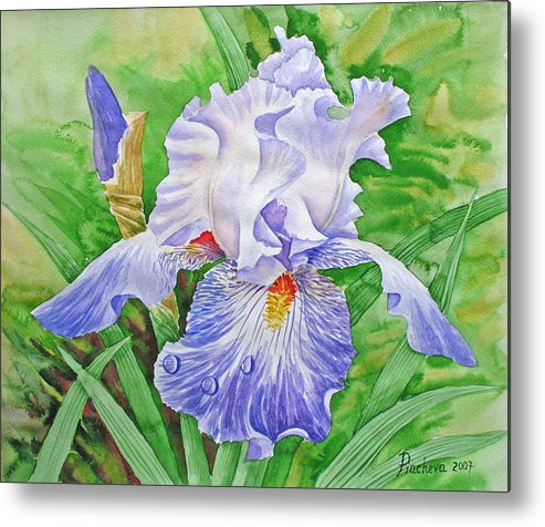 Flowers Metal Print featuring the painting Iris.drops Of Dew .2007 by Natalia Piacheva