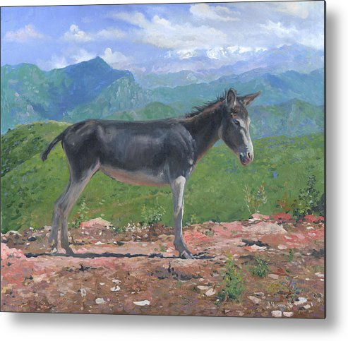 Mountain Metal Print featuring the painting Mountain Donkey by Denis Chernov