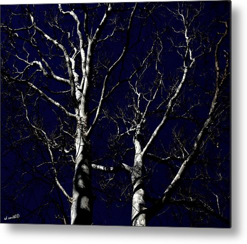 Midnight Blue Metal Print featuring the photograph Midnight Blue by Ed Smith