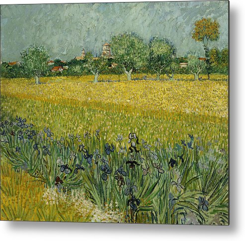Country Metal Print featuring the painting Field With Flowers Near Arles by Vincent van Gogh