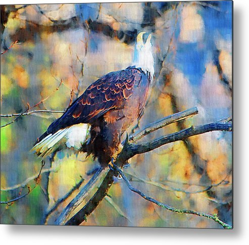 Eagle Metal Print featuring the painting American Bald Eagle by Clarence Alford