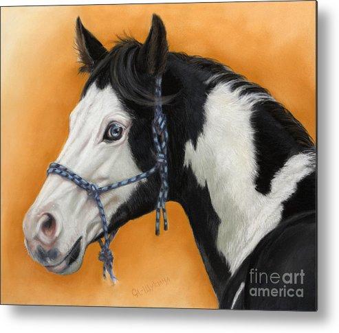 Animal Metal Print featuring the painting American Paint Horse - Soft Pastel by Svetlana Ledneva-Schukina