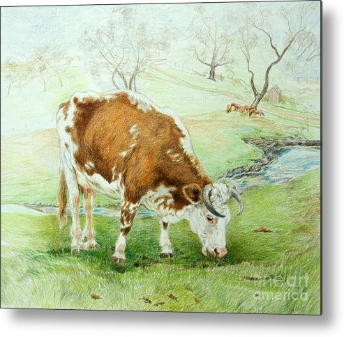 Cow Metal Print featuring the drawing Foreman's Favorite by Jill Iversen