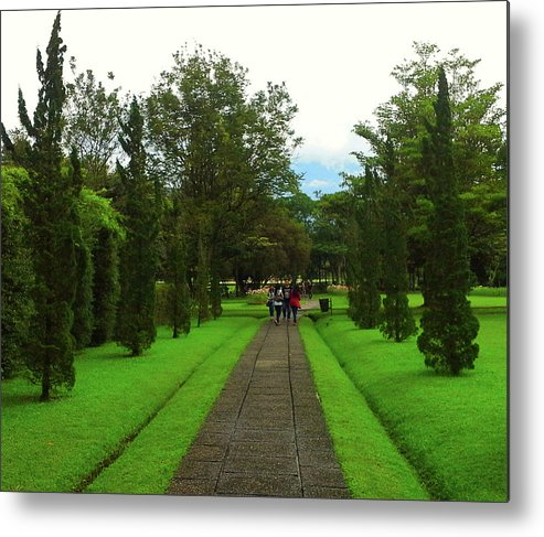 Green Metal Print featuring the photograph Green Pathway by Argie Dante