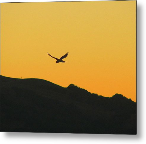 Sunset Metal Print featuring the photograph Hang Time by Kathy Roncarati