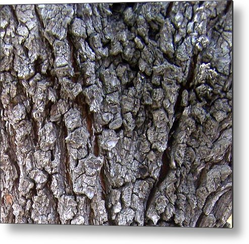 Texture Metal Print featuring the photograph Nature Abstract by Madeleine Prochazka