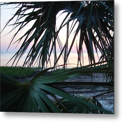 Palms Metal Print featuring the painting The Peeking Palms by Debbie May