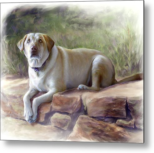 Dog Metal Print featuring the painting Restrained Energy- Yellow Labrador Retriever Portrait by Connie Moses