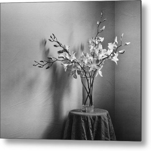Orchid Metal Print featuring the photograph Beautiful Melancholy by Amy Weiss