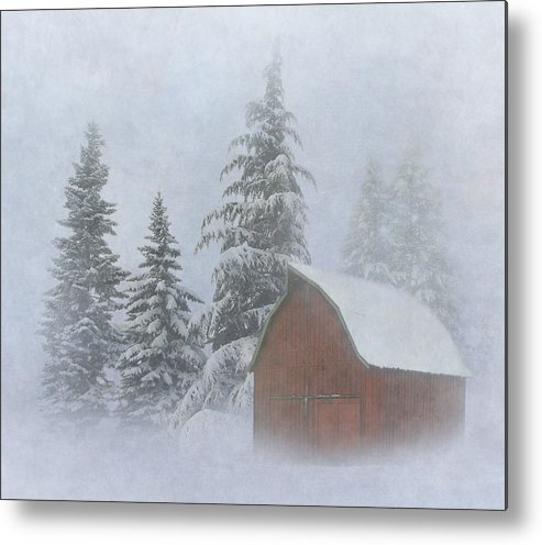 Winter Metal Print featuring the photograph Country Winter by Angie Vogel