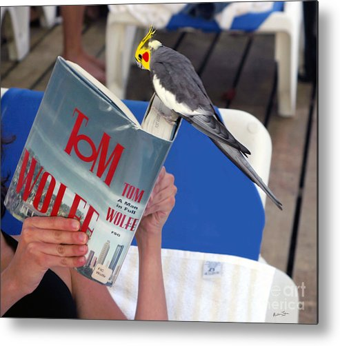 Bird Metal Print featuring the photograph The Bird Brain by Madeline Ellis