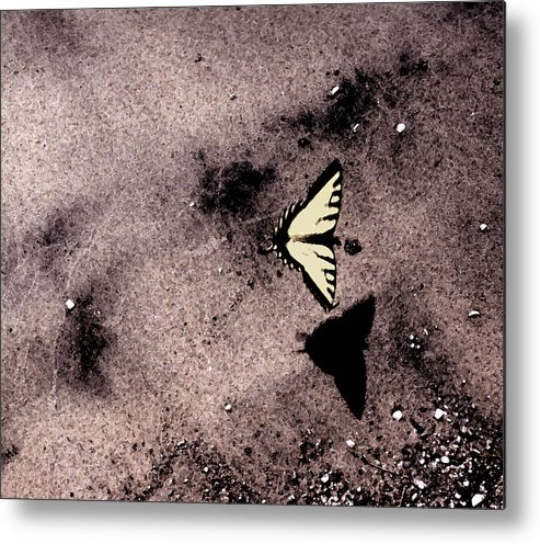 Landscape Metal Print featuring the photograph Butterfly And Sand Wc by Lyle Crump