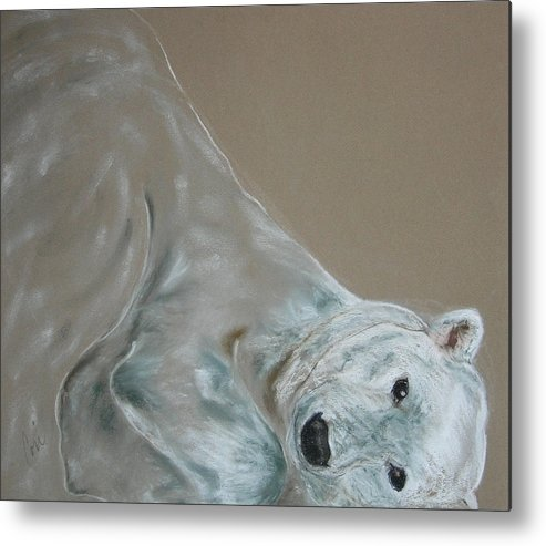 Polar Bear Metal Print featuring the drawing Arctic Frolic by Cori Solomon