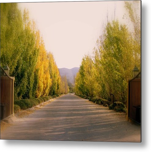 Road Metal Print featuring the photograph The Way Out by Lynn Andrews