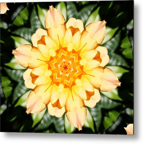 Flowers Metal Print featuring the photograph Yellow Rose Kaleidoscope by Cathie Tyler