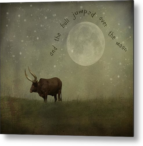 Nursery Rhyme Metal Print featuring the photograph Hey Diddle Diddle by Juli Scalzi