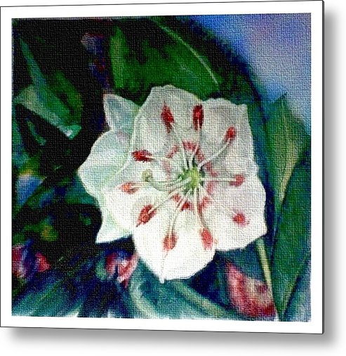 Art Metal Print featuring the painting Mountain Laurel Blossom Closeup by Elle Smith Fagan