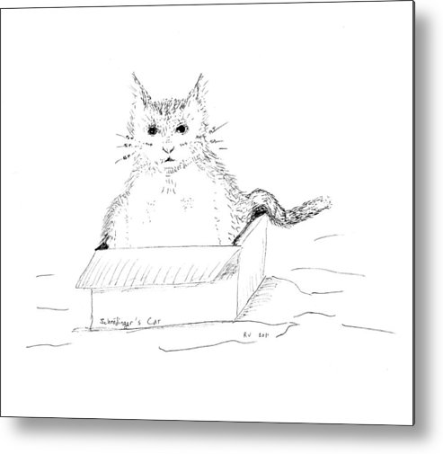 Cat Metal Print featuring the drawing Schrodinger Cat by Regina Valluzzi