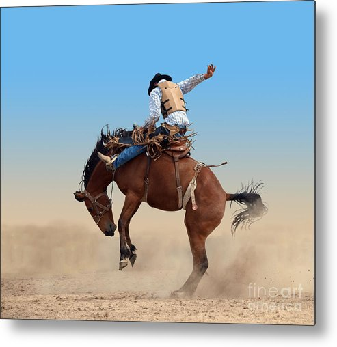 Bucked Metal Print featuring the photograph Bucking Rodeo Horse Isolated With by Margo Harrison