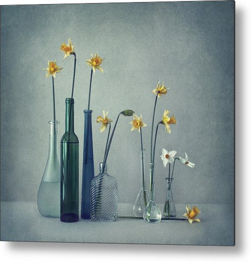 Still Life Metal Print featuring the photograph Daffodils by Dimitar Lazarov -