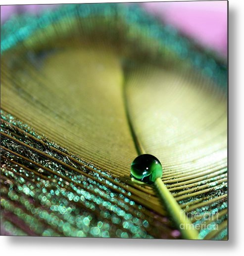 Feather Metal Print featuring the photograph Emerald City by Krissy Katsimbras