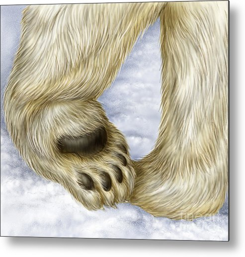 Bear Metal Print featuring the photograph Polar Bear Paw by Laurie OKeefe