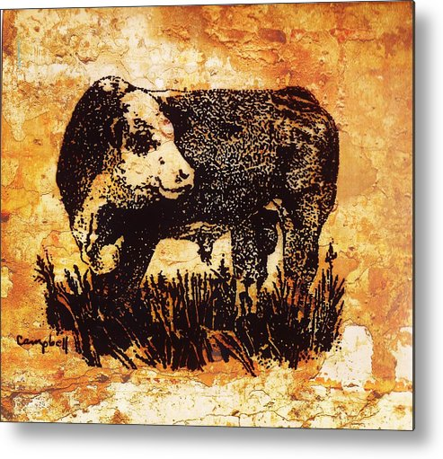 Polled Hereford Metal Print featuring the photograph Polled Herford Bull 22 by Larry Campbell