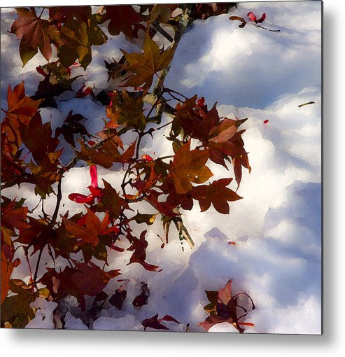 Nature Metal Print featuring the photograph After The Storm by Michael Friedman
