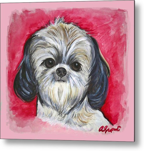 Shih Tzu Metal Print featuring the painting Bella The Shih Tzu by Ann Marie Napoli