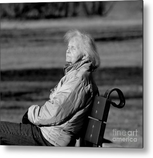 New England Metal Print featuring the photograph Sleeping by Lennie Malvone