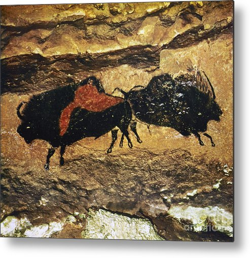 15000 Metal Print featuring the photograph Cave Art: Bison by Granger