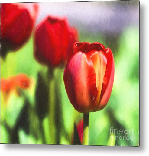 Floral Metal Print featuring the photograph Painted Tulips by Terry Weaver