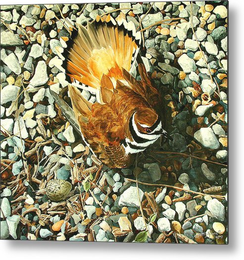 Bird Metal Print featuring the painting The Protector by Scott Alcorn