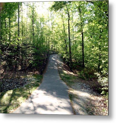 Walking Metal Print featuring the photograph Trail Around Lake Johnson by Judith Stewart
