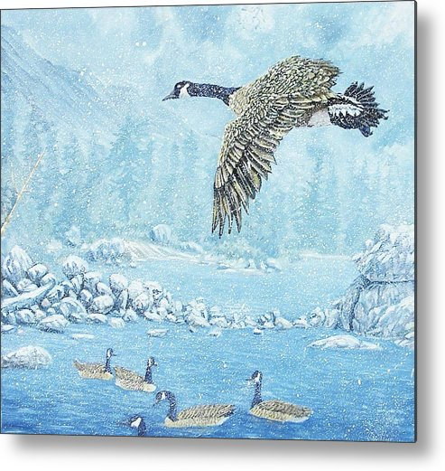 Wildlife Metal Print featuring the painting Boulder Bay Geese by Wayne Monninger