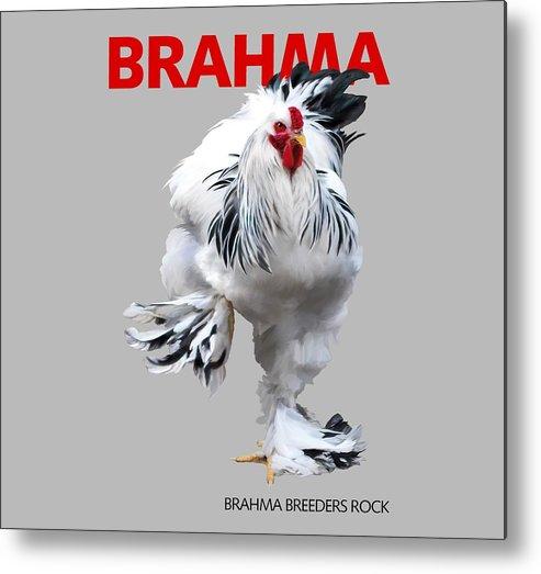 Brahma Metal Print featuring the digital art Brahma Breeders Rock Red by Sigrid Van Dort