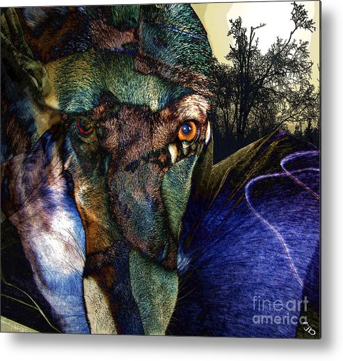 Dog Metal Print featuring the photograph Domesticated by Ron Bissett