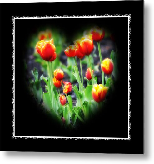 Heart Metal Print featuring the photograph I Heart Tulips - Black Background by Bill Cannon