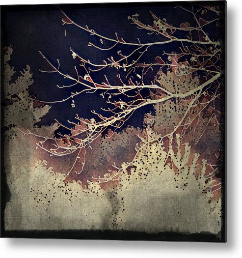 Woods Metal Print featuring the photograph Wintervwoods by Kim Comeau