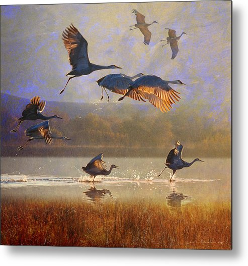 Sandhill Cranes Metal Print featuring the painting Crane Flight Reflections by R christopher Vest