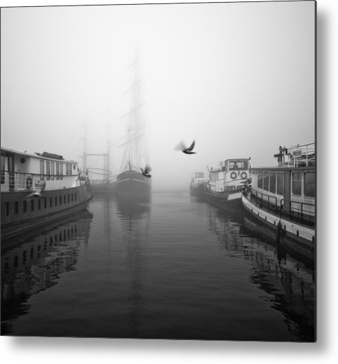 Birds Metal Print featuring the photograph Birds In The Fog by Daniel Fornies Soria