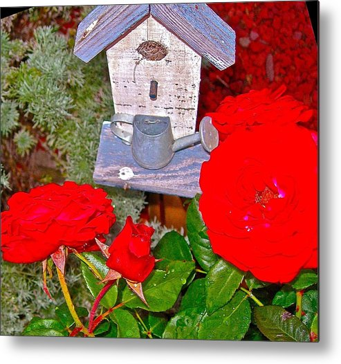 Birds Metal Print featuring the photograph Home Tweet Home by Randy Rosenberger