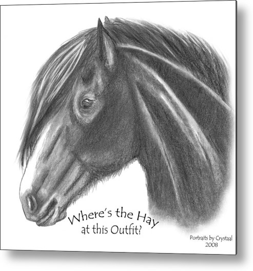 Clydesdale Metal Print featuring the drawing Clydesdale by Crystal Suppes
