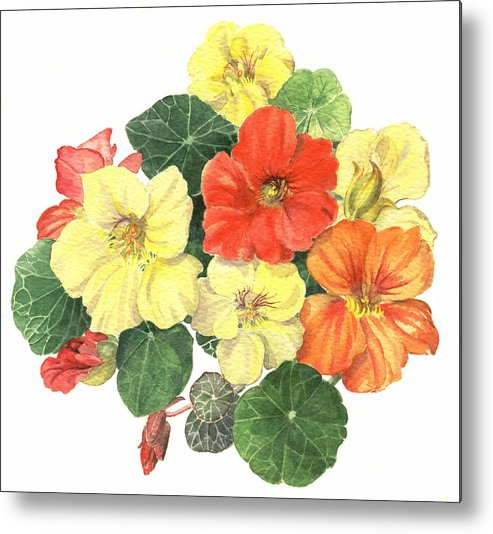 Flower Metal Print featuring the painting Nasturtiums by Maureen Carter