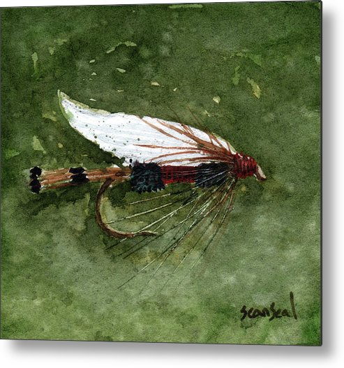 Fly Fishing Metal Print featuring the painting Royal Coachman Wet Fly by Sean Seal
