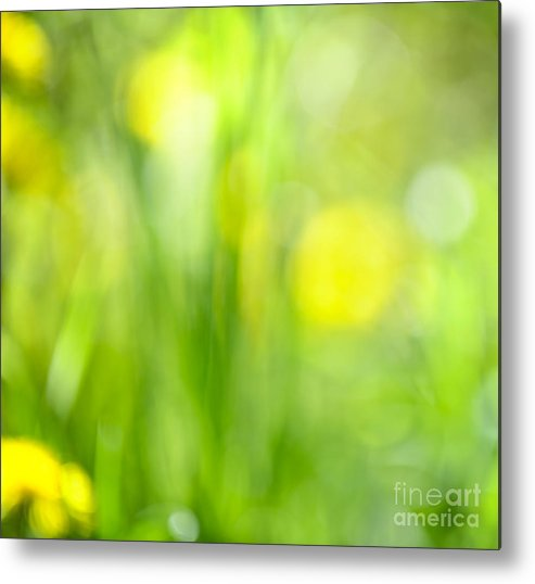Green Metal Print featuring the photograph Green Grass With Yellow Flowers Abstract by Elena Elisseeva