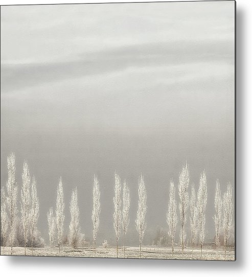 Winter Metal Print featuring the photograph Silent World by Yvette Depaepe