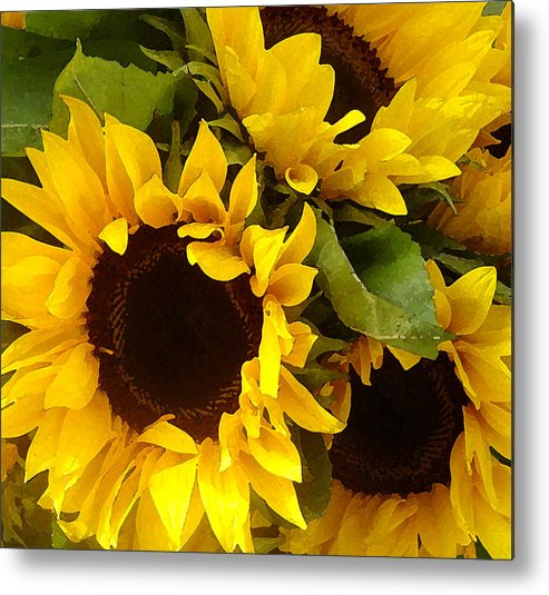 Sunflowers Metal Print featuring the painting Sunflowers by Amy Vangsgard