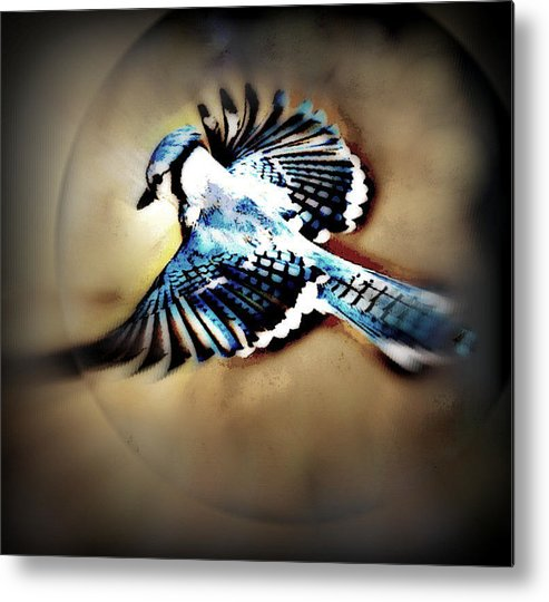 Bluejay Metal Print featuring the mixed media Betty Bluejay by YoMamaBird Rhonda
