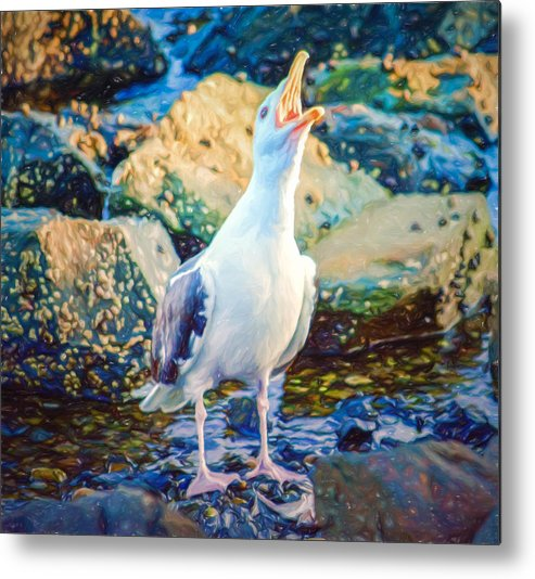 Atlantic Ocean Metal Print featuring the photograph Call Of The Gull by Black Brook Photography